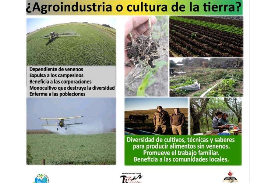 ¡No insistan, ya fue!   Agmer Seccional Paraná celebra la decisión de la justicia de declarar nulos por inconstitucionalidad  artículos  del decreto 2239/19