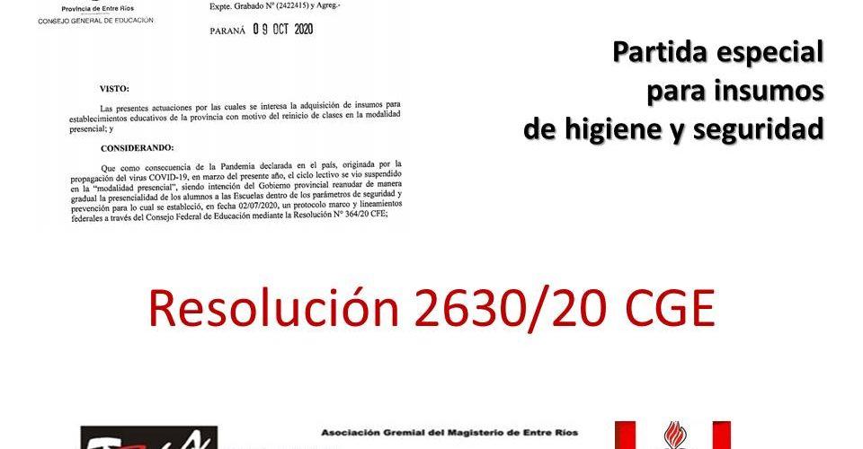 Partida especial para insumos de higiene y seguridad. Resolución 2630/20 CGE